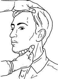 Прощупывание мягких тканей шеи