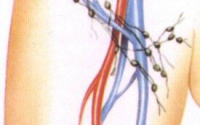 Опасно ли воспаление лимфатических узлов