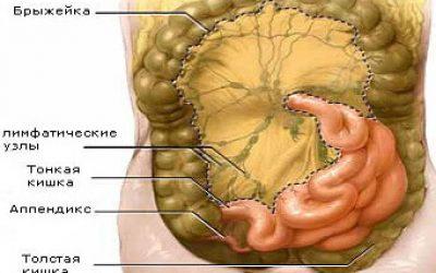 Увеличенные лимфоузлы в брюшной полости у взрослых