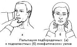 Пальпация, как один из методов обследования