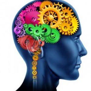 Весь механизм болезни в голове